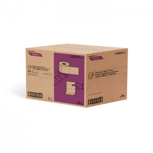 Papier hygiénique standard 2 épaisseurs B021